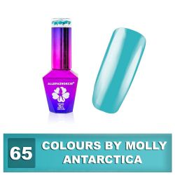 65 Gel lak Colours by Molly 10ml - Antarctica (A)