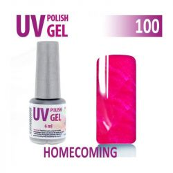 100.UV gel lak na nehty hybridní HOMECOMING 6 ml (A)
